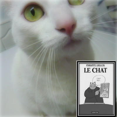 gato-philippe-geluck