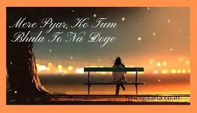 Mere Pyar Ko Tum Bhula To Na Doge Song Hindi Lyrics