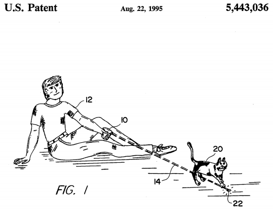 U.S. Patent 5,443,036 Figure 1