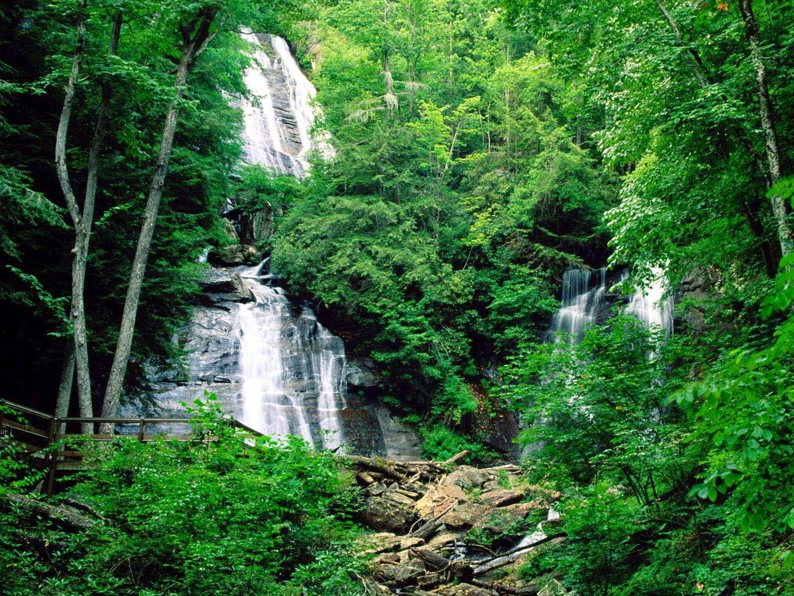 Youla Fila: Kawasan Hutan Basah dan Pesisir