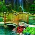 Ladybug Rainforest Escape