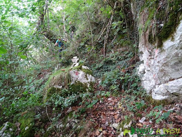 Canal de Reñinuevo: jito y marca en el bosque