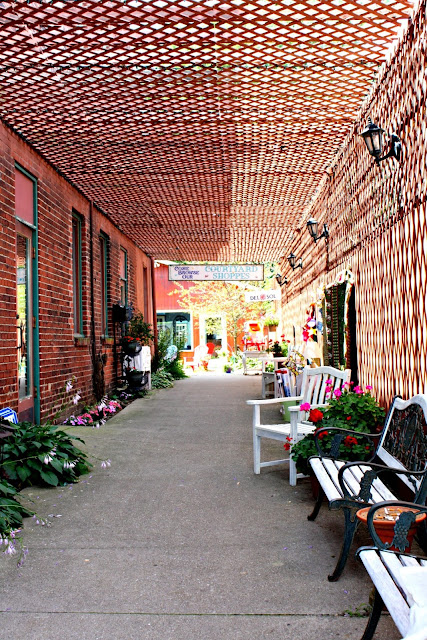 Charming alley in New Buffalo, MI