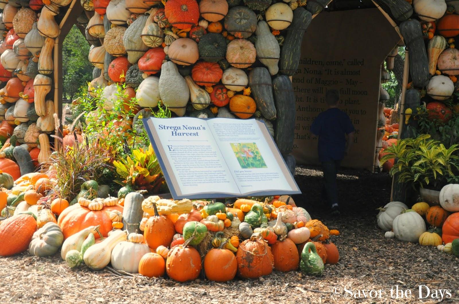 Savor The Days Pumpkin Village At The Dallas Arboretum