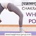 चक्रासन कैसे करें? इसके फायदे? | Chakrasana Steps and Benefits in Hindi | How to do Chakrasana
