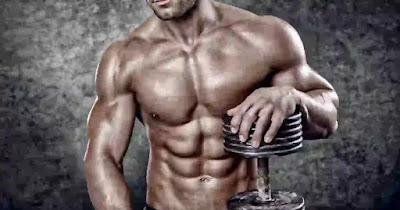 افضل بروتين لزيادة حجم العضلات