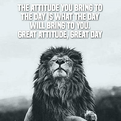 Lion Success Quotes