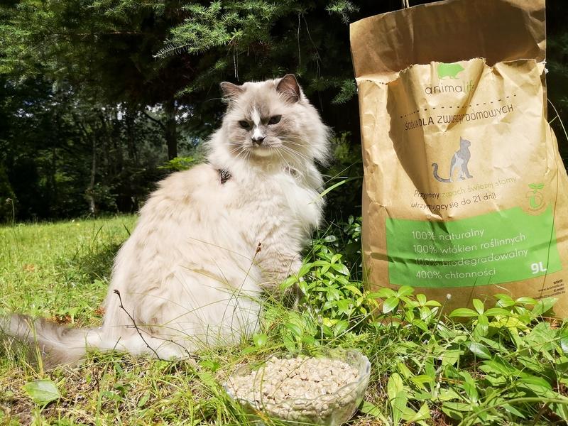 żwirek animalife, żwirek animalife opinie, żwirek animalife recenzja, naturalny żwirek dla kota, żwirek z owsa, żwirek z włókien roślinnych, pellet dla kota, żwirek pellet, żwirek zbrylający dla kota, kot testuje