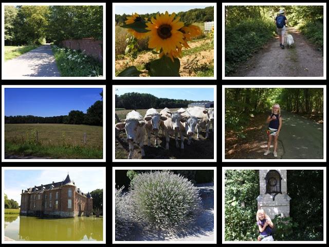 Op deze foto zie je ons wandelroute in het dorp Bois-de-Lessines (Lessenbos)