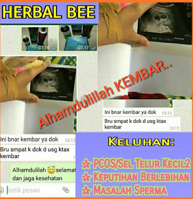Agen Resmi Herbal Bee di Bondowoso