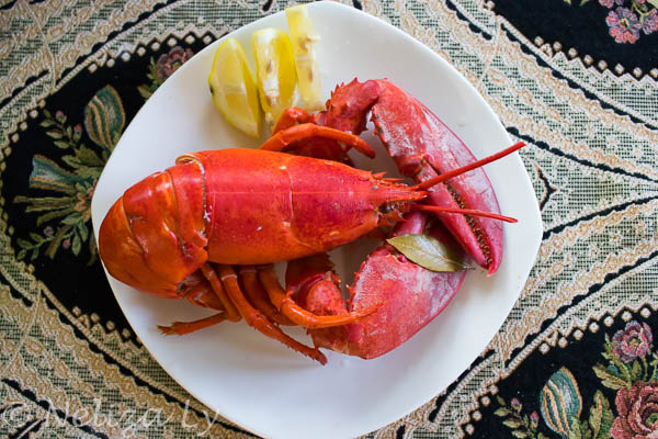 Instant Pot Whole Lobster