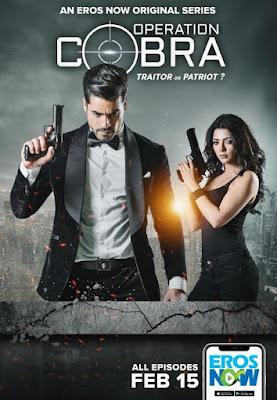 Operation Cobra 2019 Hindi Complete WEB Series 720p HEVC x265
