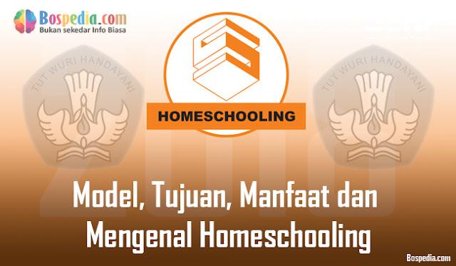 Model, Tujuan, Manfaat dan Mengenal Homeschooling