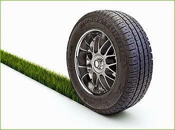 ¿Por qué no hay ruedas en la naturaleza?