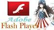 Adobe Flash Player 32.0.0.207 Terbaru Install Offline