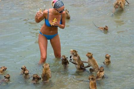 funny beach photo