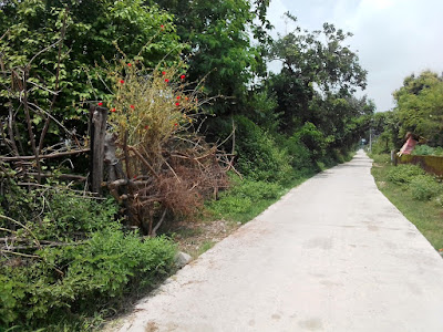 2Bigh Land For Sale Motadhak Kotdwara Uttarakhand2