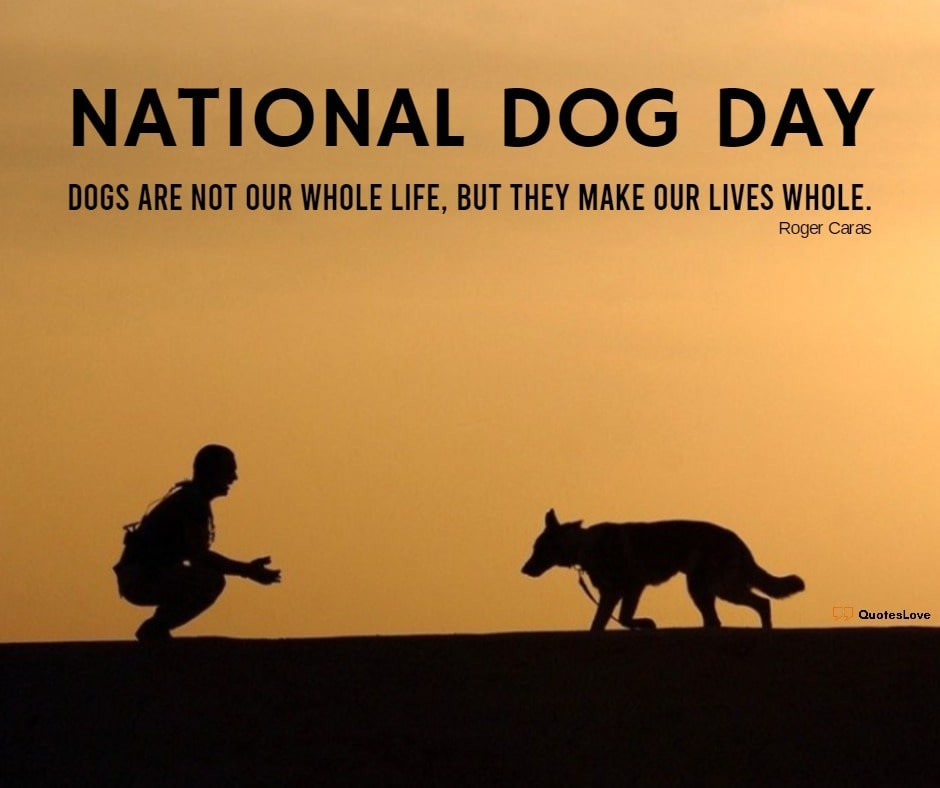 National Dog Day Quotes, Sayings, Wishes, Greetings, Images, Pictures, Poster