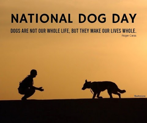29+ [Best] National Dog Day 2021: Quotes, Sayings, Wishes, Greetings, Images, Pictures, Poster