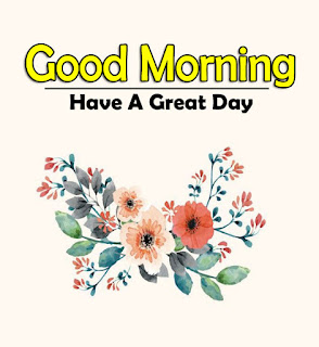 New Good Morning 4k Full HD Images Download For Daily%2B70