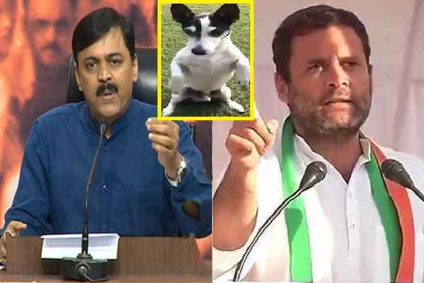 gvl-narsinha-rao-remind-congress-worker-to-ready-to-solute-piddi