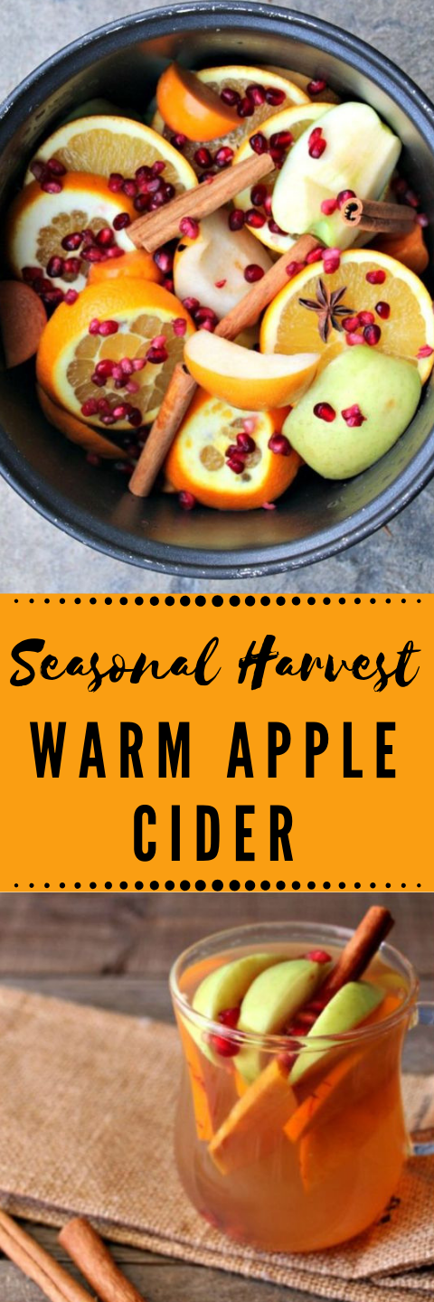 HOMEMADE FALL HARVEST HOT CROCKPOT APPLE CIDER #hot #drink #recipes #homemade #party