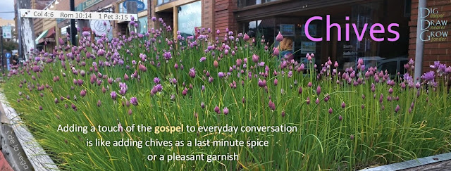 Chives: Adding a touch of the gospel is like adding chives as a last minute spice or a pleasant garnish (Colossians 4:6, Romans 10:14, 1 Peter 3:15)