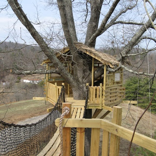 The-Most-Beautiful-Tree-House-Plans-Little-Bridge
