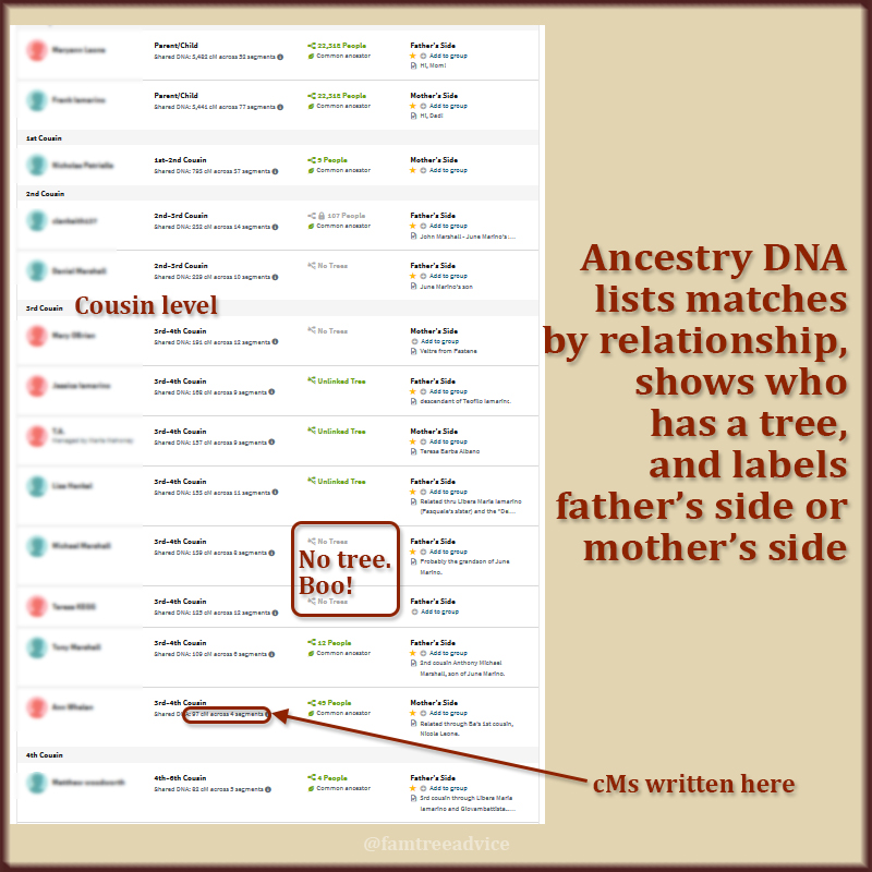 See what's available and choose which DNA match you want to solve first.