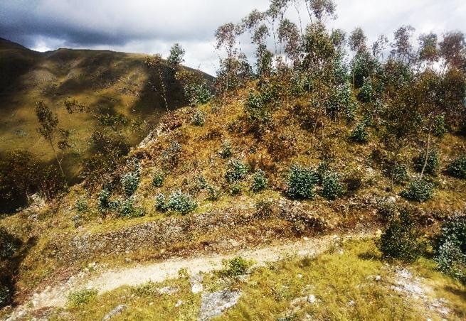 Complejo arqueológico Campanorco - Cajabamba