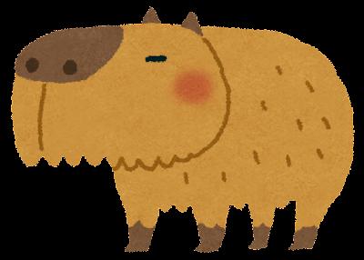 カピバラのイラスト(どうぶつ)