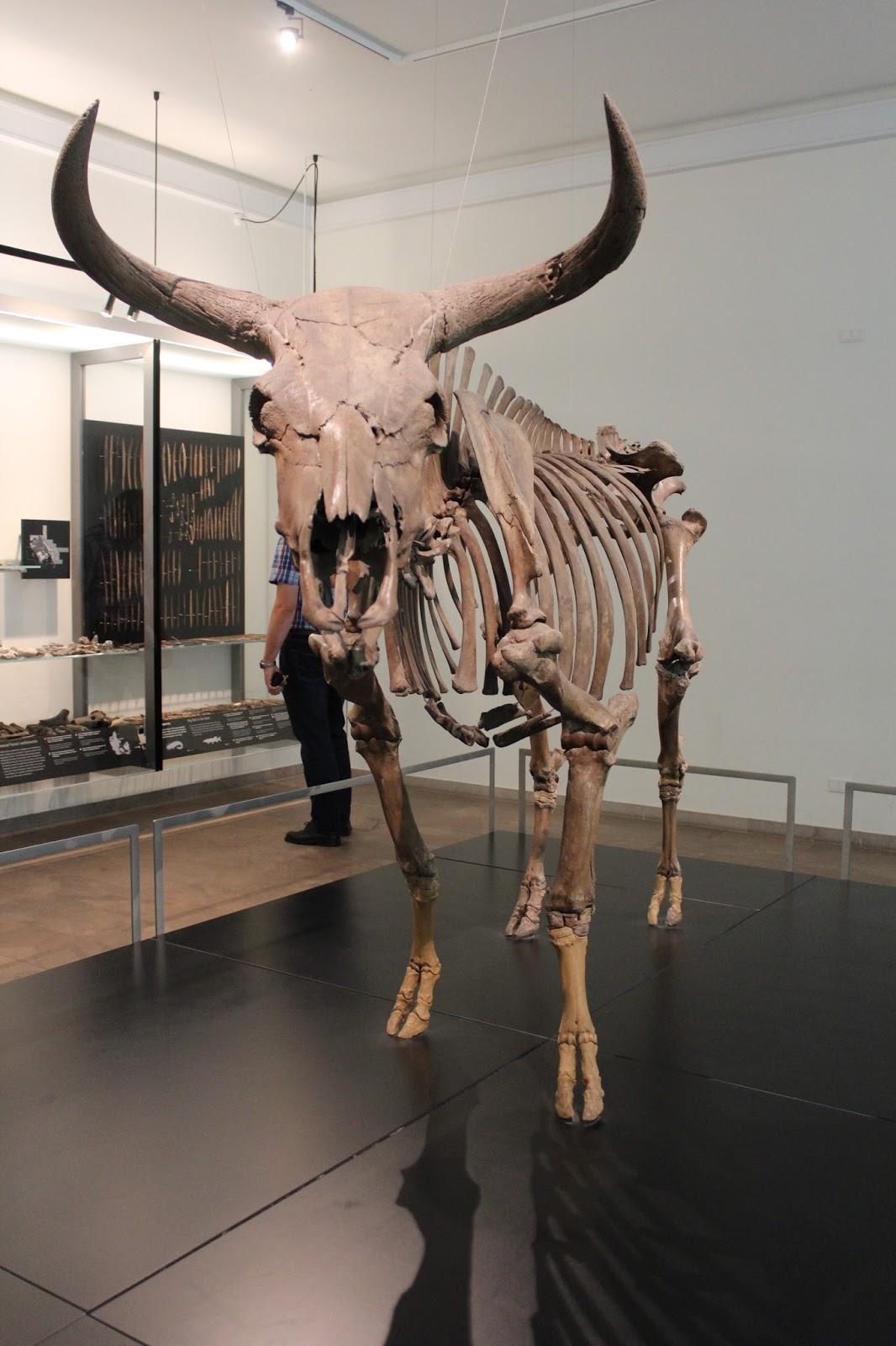 Museu-Copenhague-Dinamarca