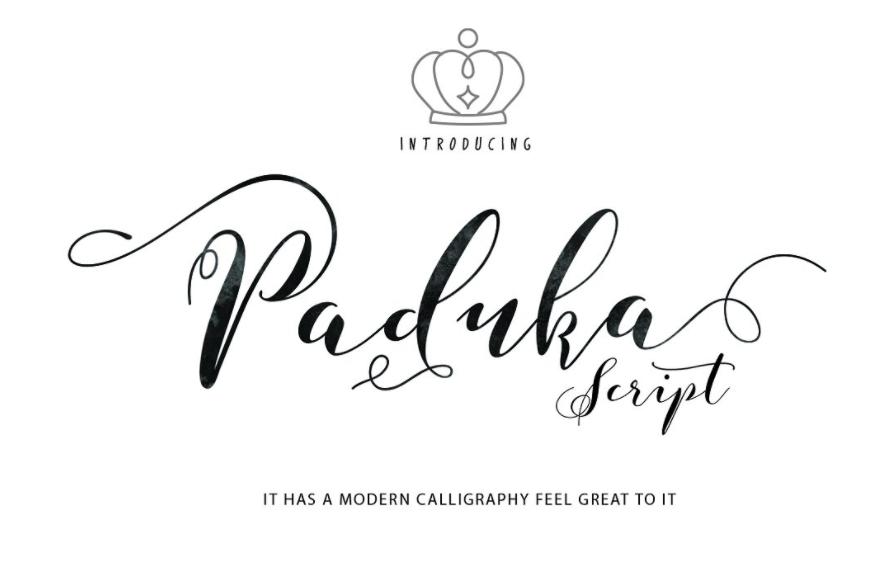 89+ Elegant Script Fonts Free Download - Blingtastic Script Font