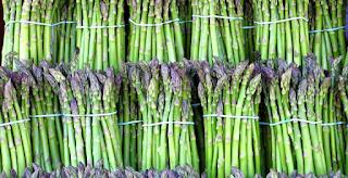 Pengendalian Hama, Penyakit Sayuran Asparagus