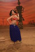 Actress Varalaxmi sizzling pics-thumbnail-10