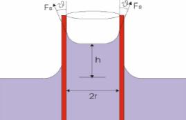 Gas Condensado - Fenómenos de Capilaridad