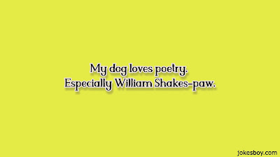 dog puns for adults