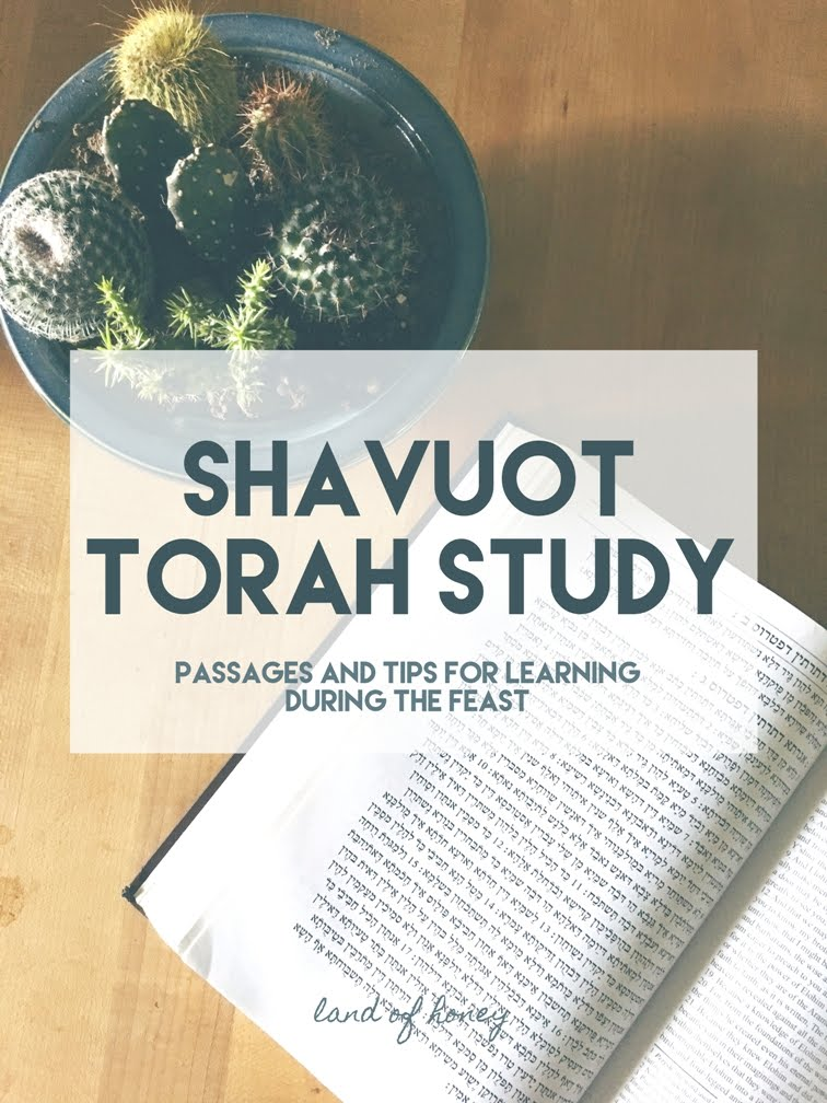 Throw a Torah Study for Shavuot
