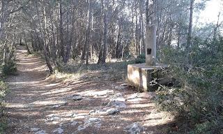 Puig d'Aguilera (El repte dels 100 cims)