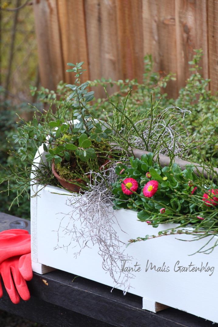 Selbst gemachte Holzbox mit Frühlingsblumen