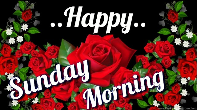 Good Morning Happy Sunday Quotes Wishes Whatsapp Images