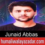 https://humaliwalaazadar.blogspot.com/2019/08/junaid-abbas-nohay-2020.html