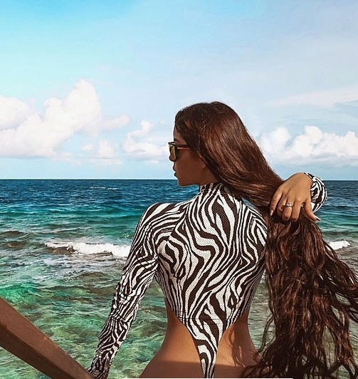 Demi Rose poses in a VERY high cut zebra-print swimsuit in new photo