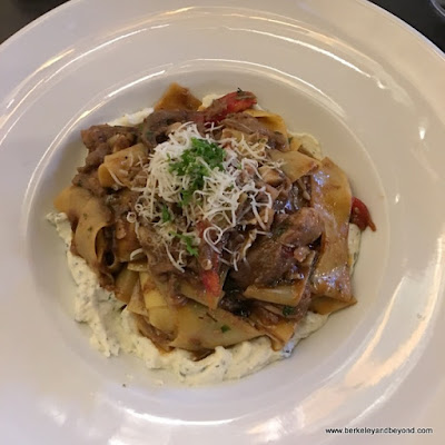 pappardelle pasta with a braised lamb sauce at Nico's 1508 in Berkeley, California