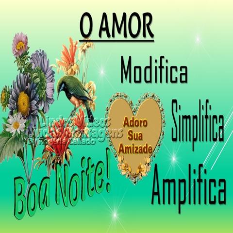 O AMOR  Modifica, Simplifica e Amplifica.  Adoro Sua Amizade!  Boa Noite!