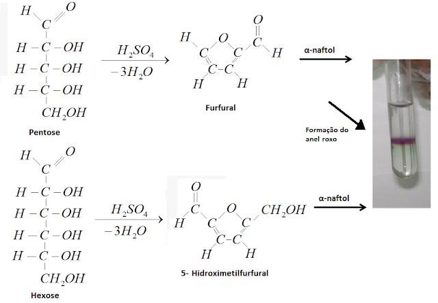 reagentes teste de molisch laboratorio