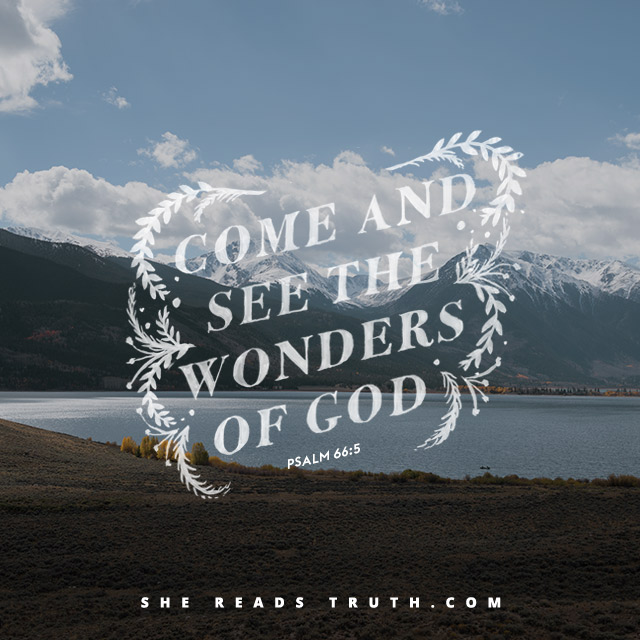 Come and see the wonders of God