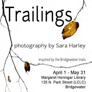 Trailings Exhibit by Sara Harley