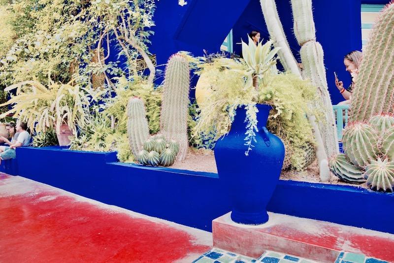marrakesz ogród majorelle, Marrakesz ogród ysl Laurent Jardin majorelle kolor