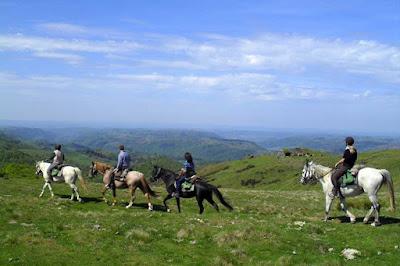 Randonnée Equestre en Pays Gentiane
